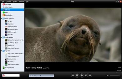 miro 1 Miro Reproductor de Video y Televisión por Internet Gratis