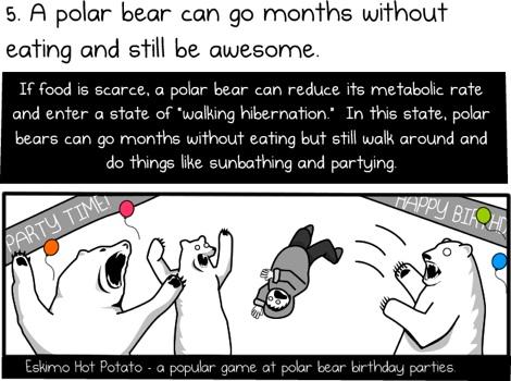 6 razones para montar un oso polar para trabajar 4 Seis razones para ir en Oso Polar al trabajo