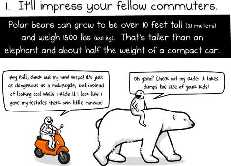 Seis razones para ir en Oso Polar al trabajo - 6-razones-para-montar-un-oso-polar-para-trabajar