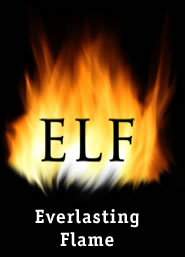 Cortar llamadas automáticamente en Blackbberry con Everlasting Flame - everlasting-flame