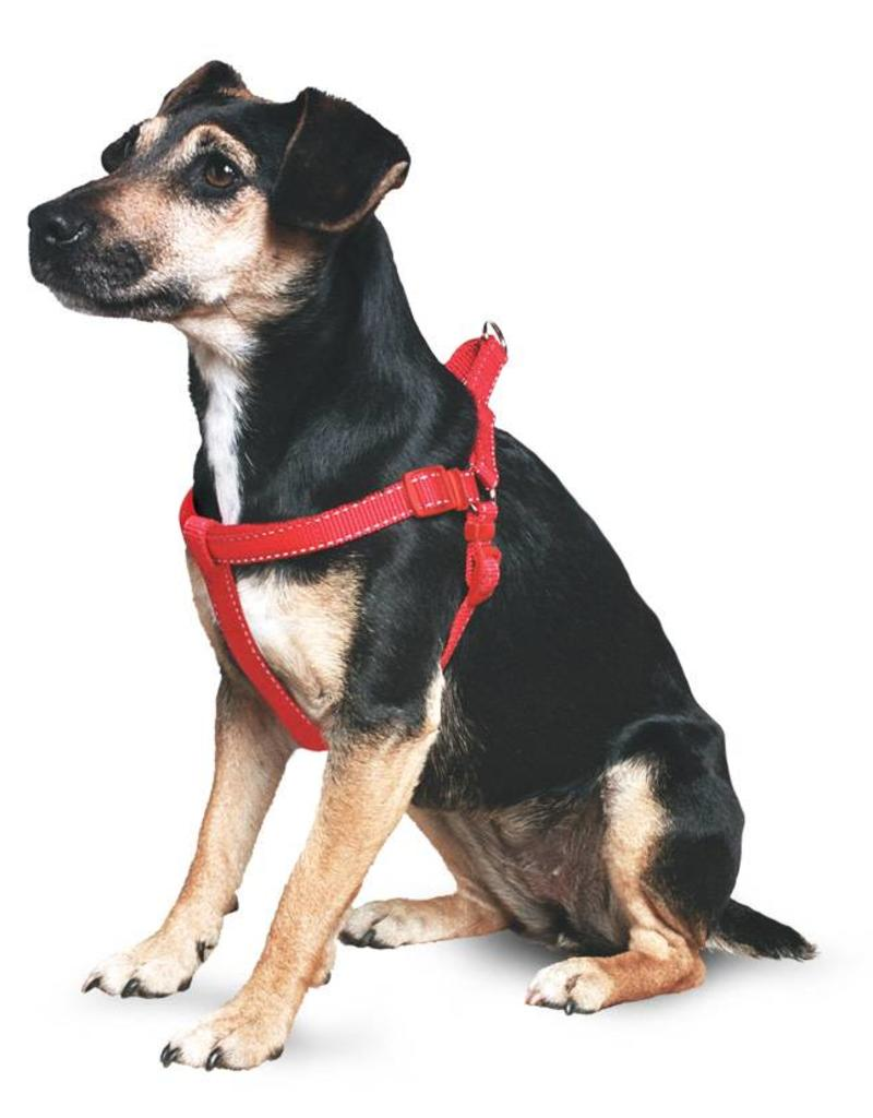 hight resolution of ancol heritage reflective padded nylon dog harness
