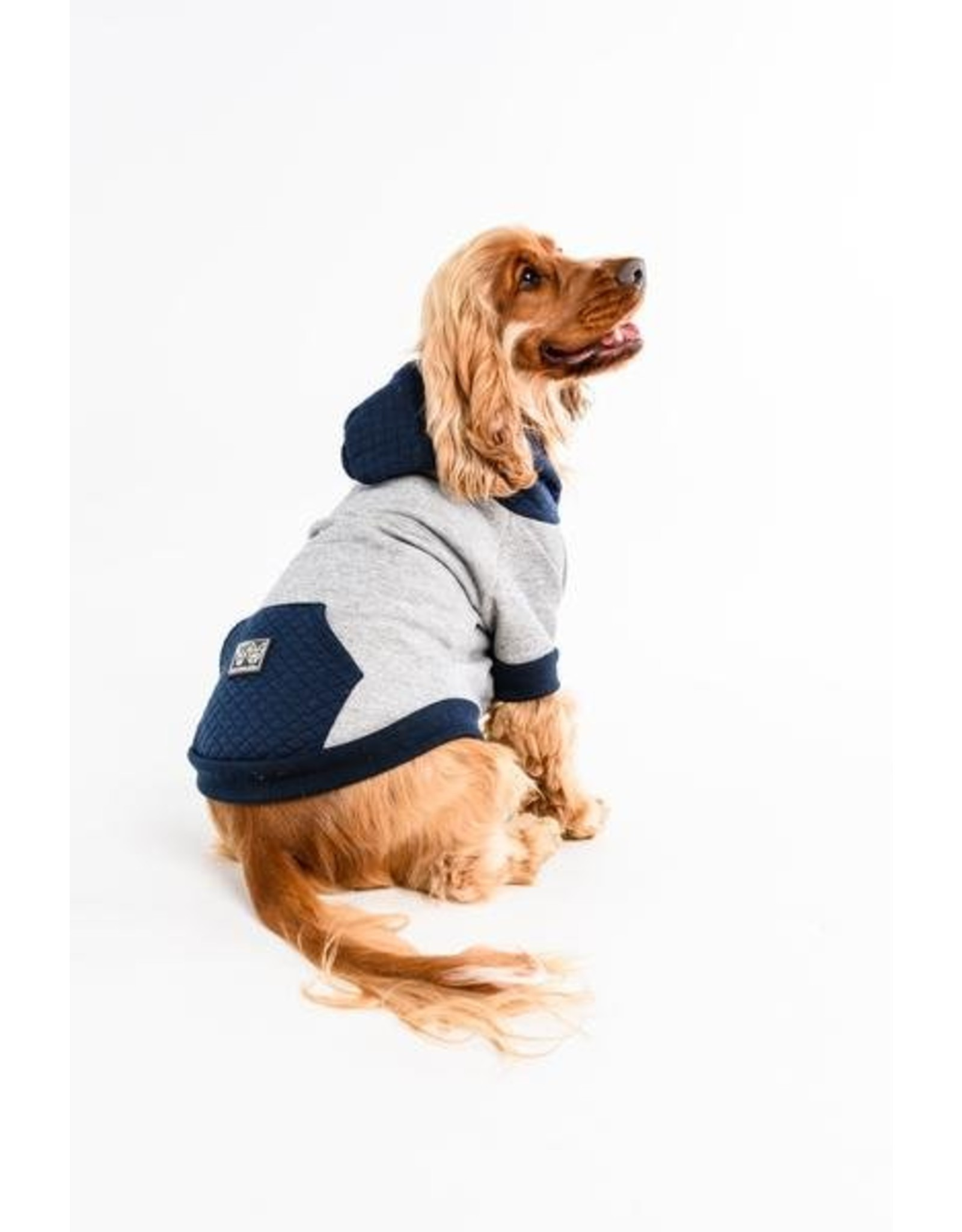 Big And Amp Little Dogs Hoody Jumper Quilted Blush