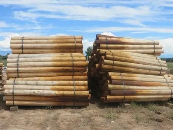 Bark On Cedar Posts For Sale Near Me