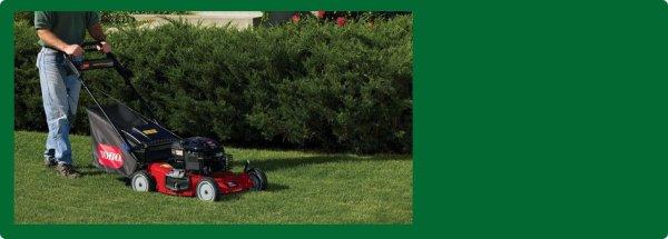 lawn maintenance sylvania