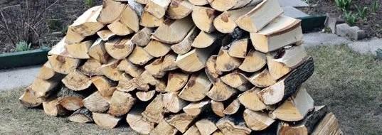 Hackberry Firewood
