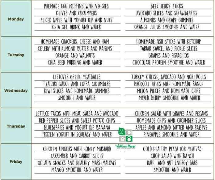 Wellness Mama Healthy School Lunch Ideas and Menu