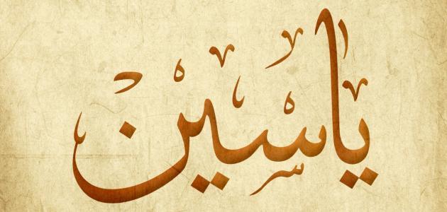 تفسير اسم ياسين في المنام موسوعة وزي وزي