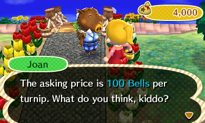 Animal Crossing: New Leaf/Joan — StrategyWiki, the video ...