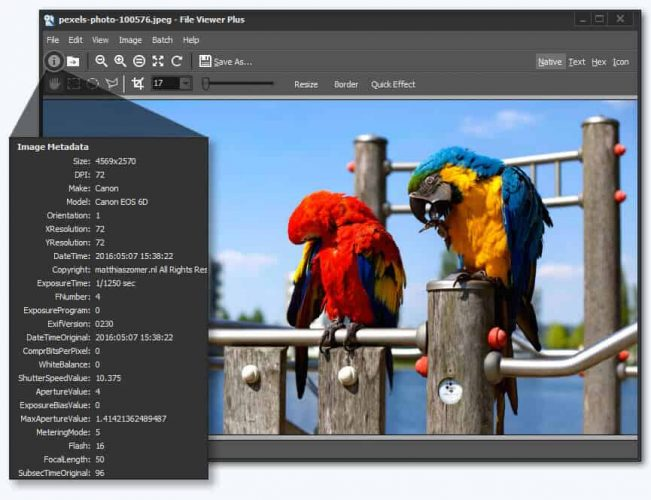 file viewer plus 2 - recommended software