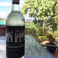 Review: Tamburlaine - Organic Pinot Gris (2017)
