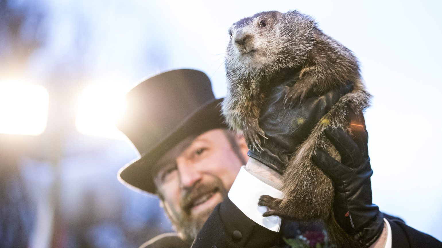 Groundhog Day Punxsutawney Phil Predicts Spring Will Come