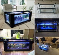 Spectacular DIY Fish Tank Coffee Table