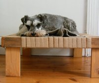 Simple and Stylish DIY Pet Beds