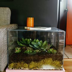 Kitchen Decorating Ideas Cart Plans Modern Gardening: 12 Diy Terrariums You Can Keep As Home Decor