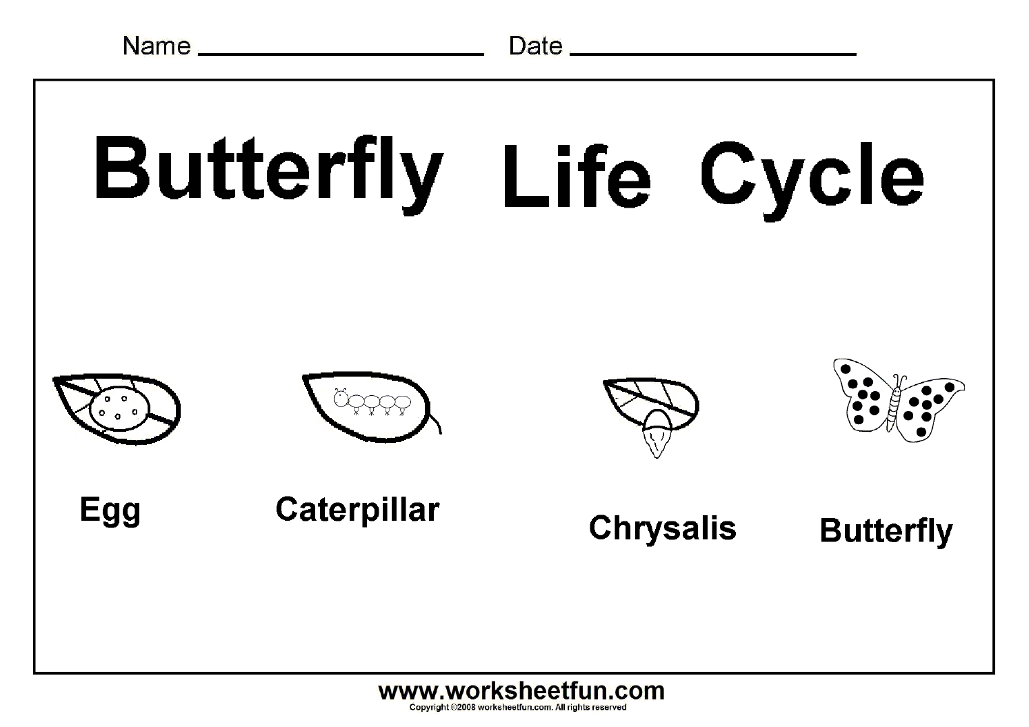 Butterfly Life Cycle One Worksheet Free Printable