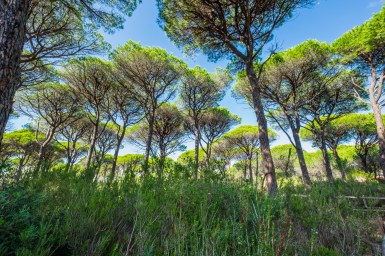 Maremma Nationalpark