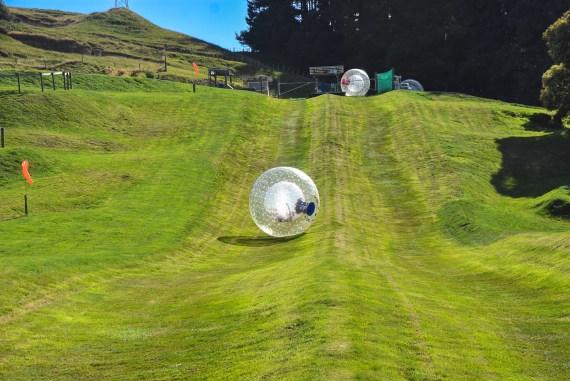 OGO Rotorua - Zorbing Neuseeland