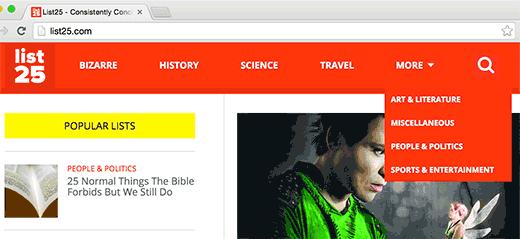 Một trang web WordPress với các chủ đề trong menu điều hướng