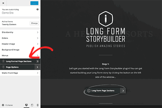 Long form content editor options inside customizer