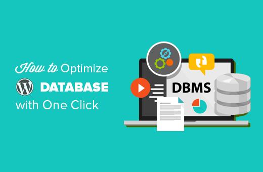 Cómo optimizar la base de datos de WordPress