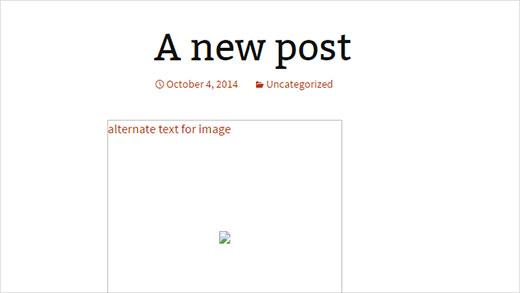 A broken image showing alt text