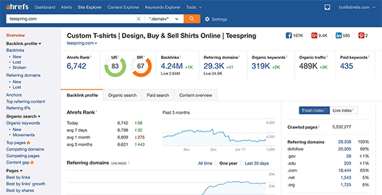 Ahrefs report overview