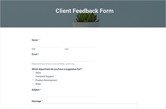 Client feedback form preview