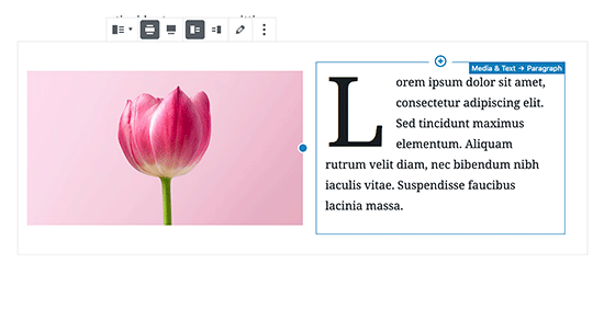 Image and text block settings