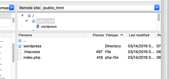 Root directory with a separate WordPress folder inside it