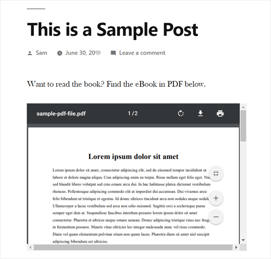 PDF Embedded in WordPress Post Preview