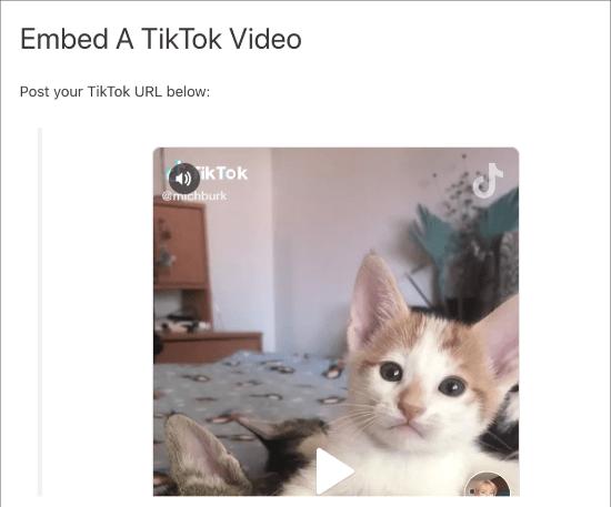 Video TikTok yang disematkan