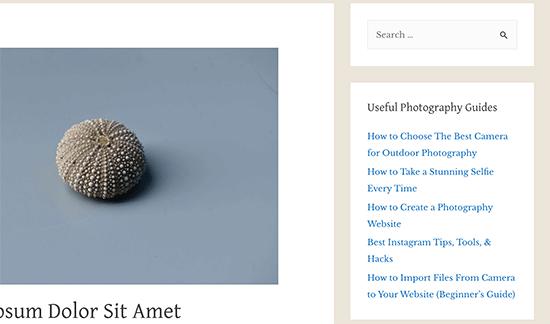 WordPress kenar çubuğu metin widget'ında öne çıkan gönderiler