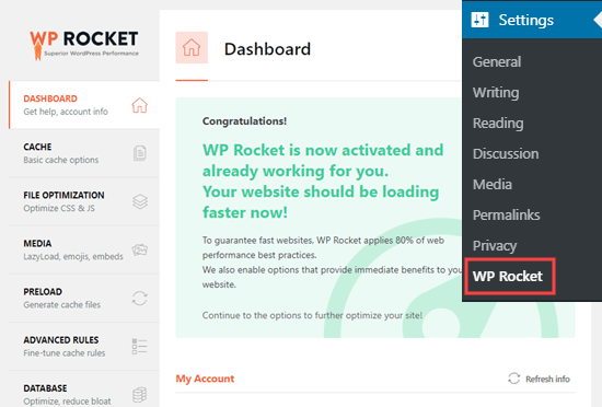 The message showing that WP Rocket is active and working on your site