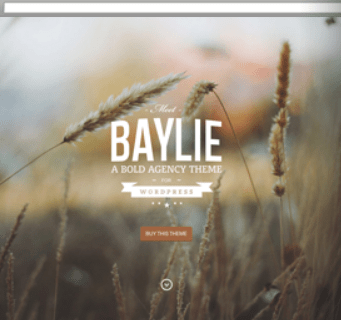 Compatibility Between Baylie Theme And Wpml