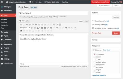 WordPress Admin Design - Edit Post Screen