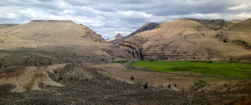 Looking north, towards the entrance to the John Day Fossil Beds Sheep Rock Unit
