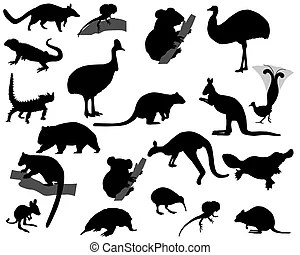 Numbat Illustrations and Clipart. 123 Numbat royalty free