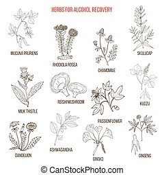 Alcohol addiction Clipart and Stock Illustrations. 2,907