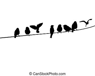 Bird silhouette Illustrations and Clip Art. 57,851 Bird
