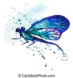 dragonfly stock illustrations