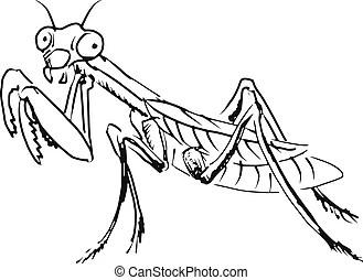 Praying mantis Illustrations and Stock Art. 158 Praying