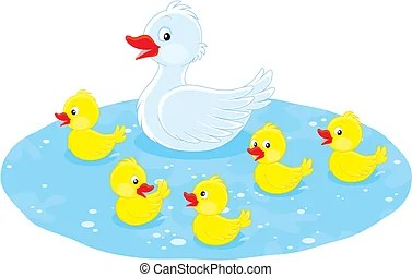 ducklings illustrations and clipart