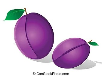 plum illustrations and clip art
