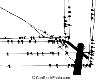 Swallow Stock Illustrations. 2,639 Swallow clip art images