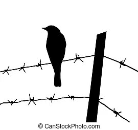 Birds wire Illustrations and Clip Art. 1,129 Birds wire