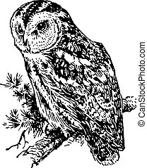 Perching Illustrations and Clip Art. 5,419 Perching