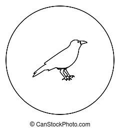 Corvus Clipart and Stock Illustrations. 325 Corvus vector