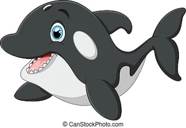 whale killer cartoon cute orca drawing vector clipart illustration clip animal adorable drawings
