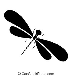 damselfly illustrations and clipart
