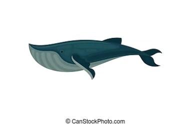 whale side cartoon sea mobile children mammal marine animal icon vector element flat illustration background game